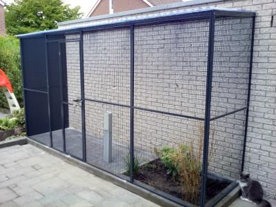Kattenren Rovac Winschoten (Groningen) kooienbouw en volierebouw 5817